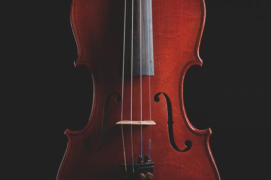 Geige von Tomas Pospichal